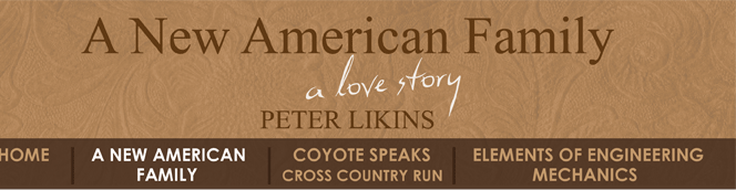 About the Book - A New American Family, A Love Story by Peter Likins